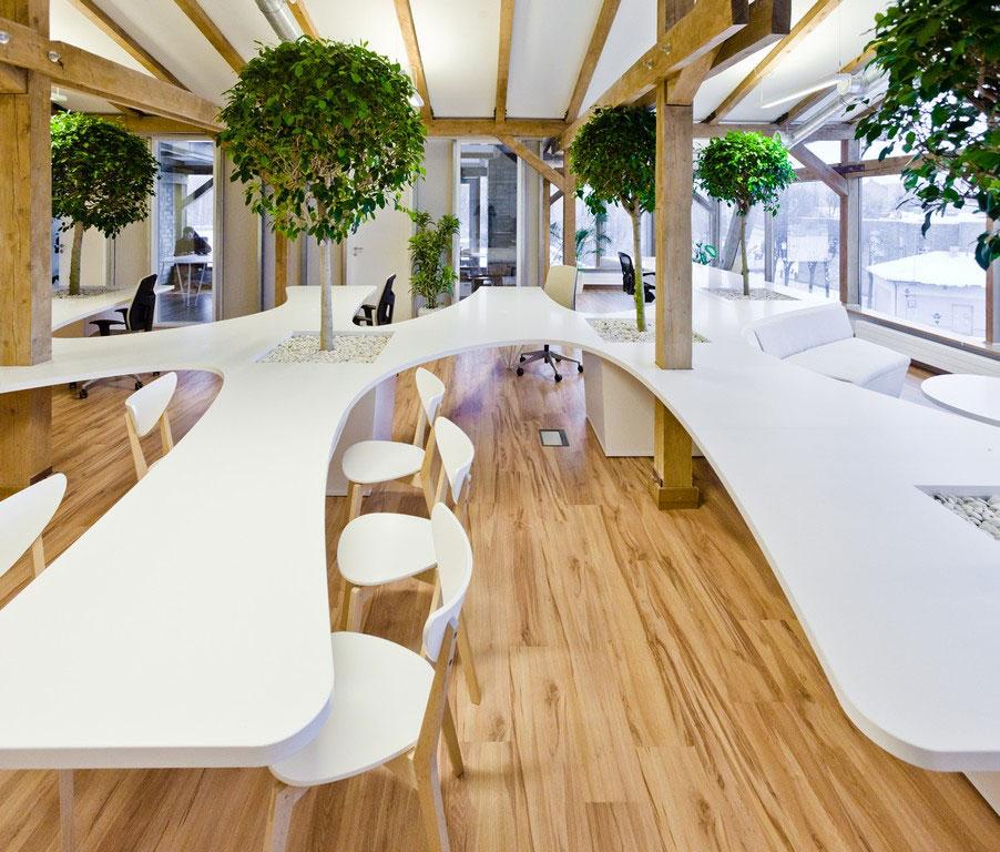 Vẻ đẹp độc đáo khi đưa cây xanh vào trong thiết kế nội thất văn phòng