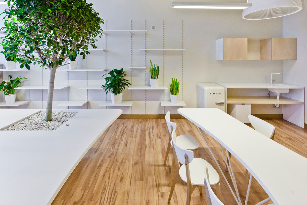 Vẻ đẹp độc đáo khi đưa cây xanh vào trong thiết kế nội thất văn phòng 3