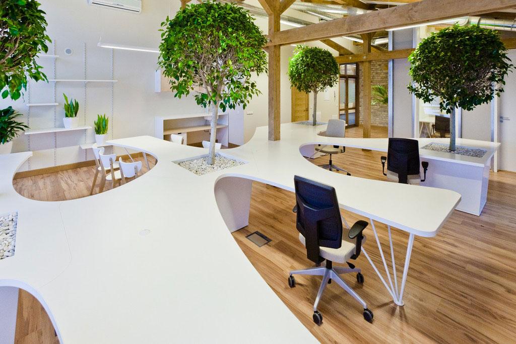 Vẻ đẹp độc đáo khi đưa cây xanh vào trong thiết kế nội thất văn phòng 8