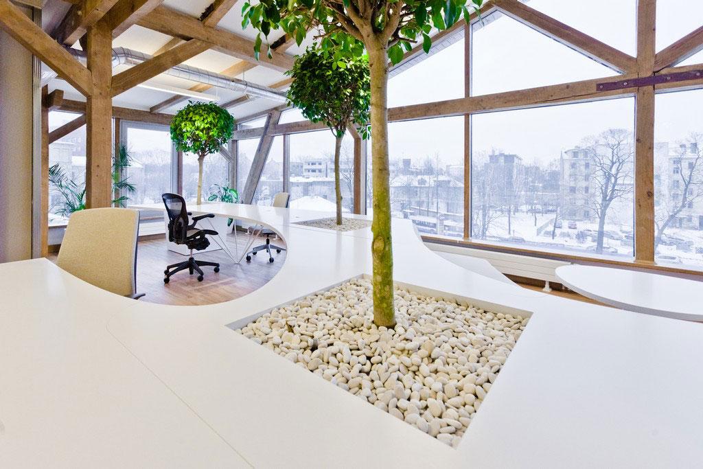 Vẻ đẹp độc đáo khi đưa cây xanh vào trong thiết kế nội thất văn phòng 10
