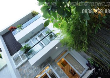 Ngôi nhà phố 3 tầng trong hẻm có sân xanh mát bởi tre trúc hoa lá